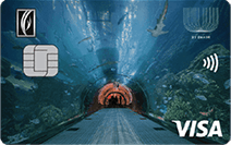 Emirates NBD U By Emaar Visa Family Card